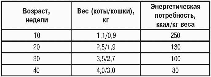 таблица необходимого количества килокалорий в сутки для кошек