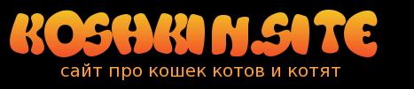 Кошкин сайт