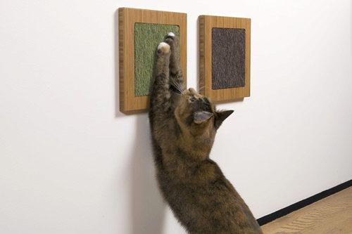 когтеточка на стене